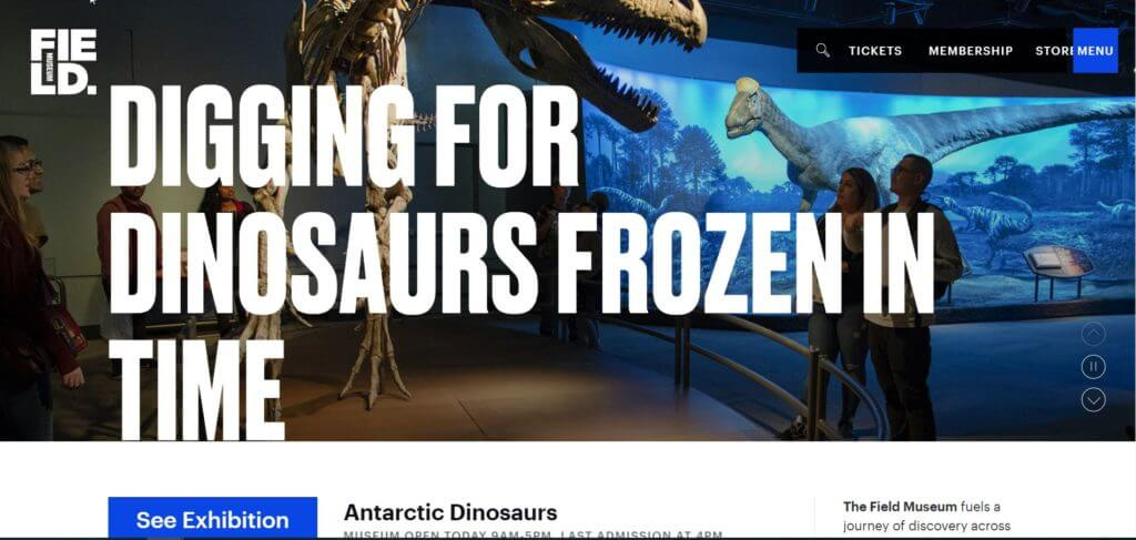 "A snippet of the Field Museum's website featuring large text reading, ""Digging for Dinosaurs Frozen in Time,"" over a full-screen background image of visitors looking at a T-rex skeleton. A small menu appears in the upper right-hand side."