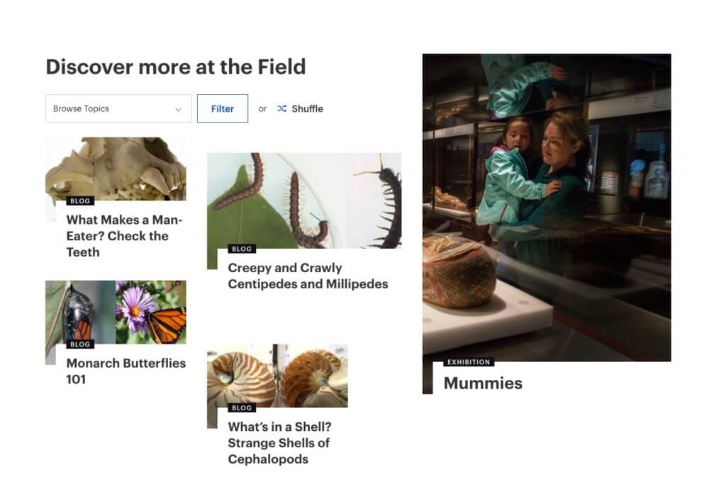 "A screenshot leads with the header ""Discover more at the Field"" and various blocks of content—four on the left-hand side, one on the right-hand side—show images, titles, and categories."