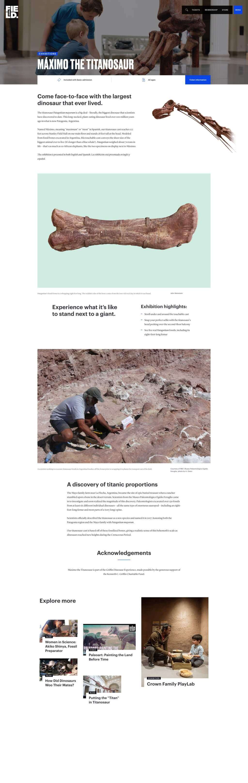 A screenshot of a Field Museum webpage featuring a vertical arrangement of images, including a close-up of a bone and an archeologist in a dirt field as well as blocks of text and related links at the bottom of the page.